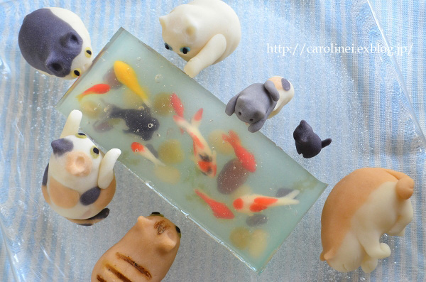 candy-cats-catch-fish-jelly-dessert-7