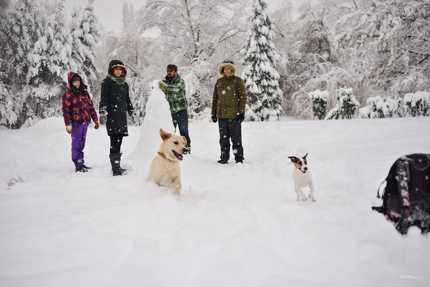 the snowy day pdf with pictures