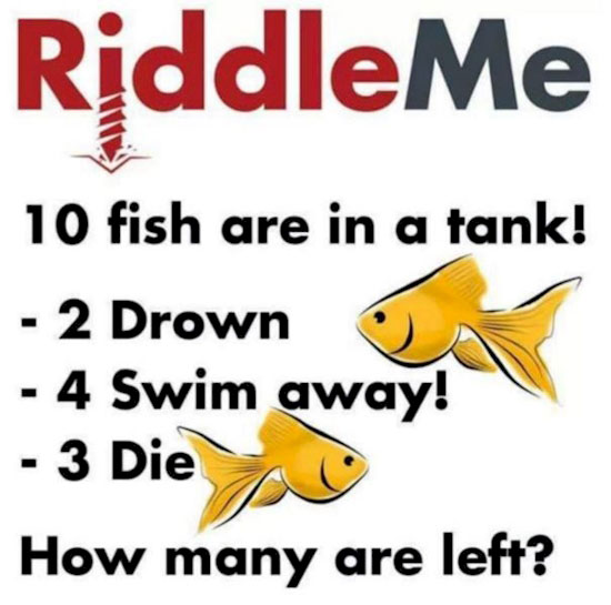 riddle