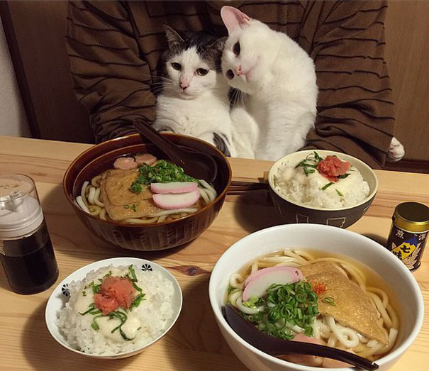 Dinner for two, please