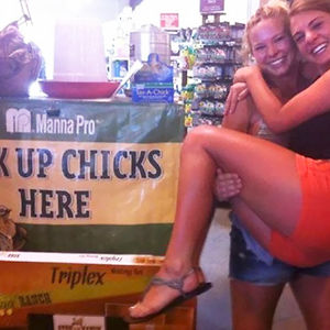 Pick Up Chicks Here