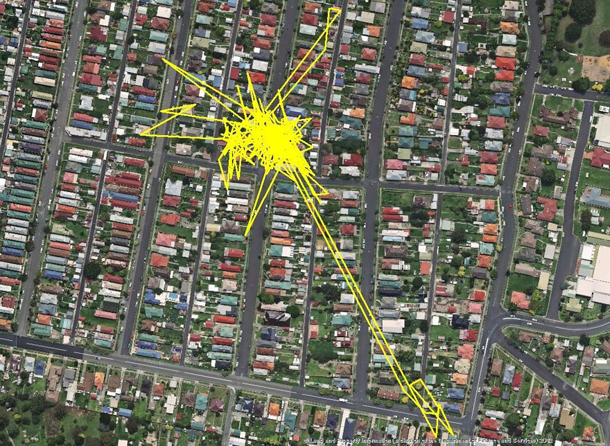 gps-tracker-cat-movement-map-lithgow-central-tablelands-local-land-services-4