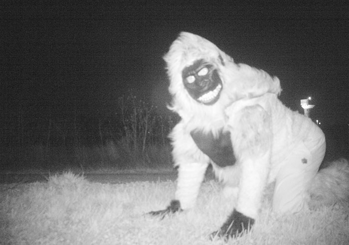police-camera-find-mountain-lion-kansas-9