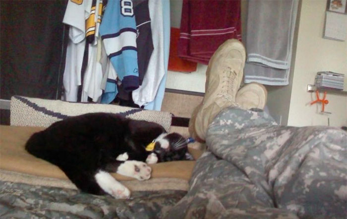 cat-rescue-soldier-life-suicide-scout-josh-marino-7