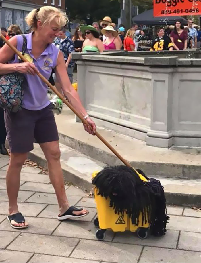 dog-mop-halloween-costume-mainstrasse-paw-rade-5